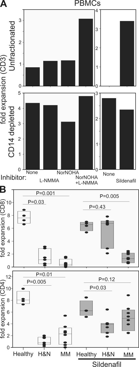 PDE5 inhibition restores proliferation of head and neck and myeloma lymphocytes. (A) Unfractionated or CD14-depleted PBMCs from MM patients were stimulated with anti-CD3/CD28 antibody–coated beads in the presence of NorNOHA, l -NMMA, both NorNOHA and l -NMMA, sildenafil, or no inhibitor. The CD3 + T cell expansion was measured 5 d later by flow cytometry. (B) Ficoll-purified PBMCs from healthy donors ( n = 4), head and neck cancer patients (H N; n = 7), or MM patients ( n = 7) were stimulated as described in A in the presence or absence of sildenafil. CD4 + and CD8 + T cell expansion was measured by flow cytometry 5 d later. Data are reported as fold change. t test p-values are reported. Horizontal lines represent the median, the 10th and 90th percentile.