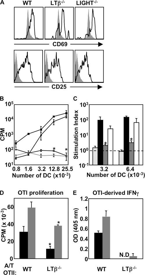Function of DCs conditioned by adoptively transferred WT-, LTβ −/− -, or LIGHT −/− -OTII T cells. (A) C57BL/6 mice received WT-, LTβ −/− -, or LIGHT −/− -OTII T cells and were immunized, and LN cell suspensions were gated on CD4 and Thy1.1 and analyzed for CD69 and CD25 at 36 h after immunization, with filled histograms representing Thy1.1 T cells transferred into WT-unimmunized mice. (B) C57BL/6 mice received OVA-specific WT- (filled squares, filled circles), LTβ −/− - (empty circles), or LIGHT −/− -OTII T cells (empty triangles), or were immunized or left unimmunized (filled circles). At 36 h after immunization, draining LN DCs were plated with OTII responder T cells and incubated at 37°C for 72 h. (C) Proliferation results from B are represented as a SI. CPM derived from OTII T cells cocultured with DCs was divided by CPM derived from OTII T cells cocultured with the same number of DC-depleted cells at the same cell input number for each individual group (internally controlled). Groups are responder OTII T cells stimulated by DCs conditioned in vivo by WT- (black bars), LTβ −/− - (gray bars), or LIGHT −/− -OTII T cells (open bars) and compared with DCs from unimmunized mice that received WT-OTII T cells (speckled bars). (D) A similar experiment was performed using DCs conditioned by WT-OTII versus LTβ −/− -OTII to stimulate naive responder OTI T cells using 15,000 or 30,000 DCs per well (black and gray bars, respectively). (E) IFNγ secretion by OTI CD8 + T cells from was evaluated by ELISA using 15,000 or 30,000 DCs per well (black and gray bars, respectively). OTII responder experiments were performed four times using DCs pooled from seven individual animals. OTI responder experiments were performed two times using DCs pooled from seven individual animals.