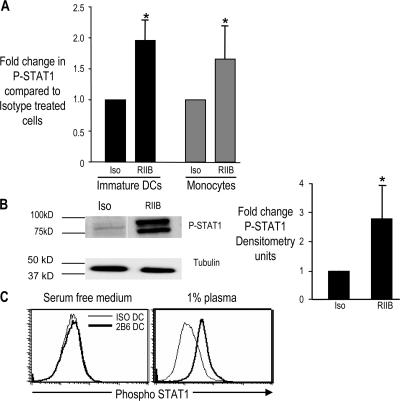 Mechanism of FcγR-mediated induction of IFN response. (A) Up-regulation of P-STAT1 in DCs or monocytes treated with anti-FcγRIIB mAb versus isotype control. Immature Mo-DCs ( n = 8) or freshly isolated monocytes ( n = 7) were treated with anti-FcγRIIB antibody (RIIB) or isotype control antibody (Iso). 24 h later, P-STAT1 expression was examined by flow cytometry. The histogram shows fold change in expression of P-STAT1 in anti-FcγRIIB antibody–treated versus isotype control antibody–treated cells. *, P