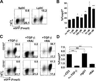 RA production by LpDC is requisite for optimal Foxp3 + T reg cell conversion. Foxp3 − CD4 T cells were cocultured with DC at a 10:1 ratio as described in Fig 4. (A) Cells were stained for α 4 β 7 and assessed for eGFP fluorescence (Foxp3) by flow cytometry. Results are representative of three independent experiments. (B) The dose responsiveness of all-trans RA on eGFP (Foxp3) expression by CD4 T cells cocultured with SpDC was determined by flow cytometry. Error bars represent the SDs of the means of three individual samples from one experiment. Statistical significance was determined using the Student's t test. *, P