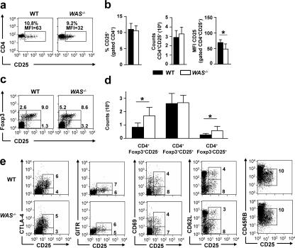 Cell count and immunophenotype of nTreg cells in the spleens of WAS −/− mice. (a) Immunophenotype of CD4 + splenocytes from representative WT and WAS − / − mice. Numbers indicate the percentages and MFI of CD25 + cells. (b) Percentage, absolute count, and MFI of CD25 + cells among CD4 + splenocytes. Mean ± SD of 13 mice per group is shown. *, P