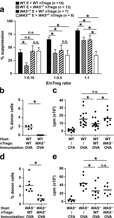 Suppressor activity of WAS −/− nTreg cells in vitro and in vivo. (a) In vitro suppression of WT or WAS − / − CD90 + CD25 − effector T cells (abbreviated as WT E and WAS − / − E, respectively). Effector T cells were mixed with purified CD4 + CD25 + nTreg cells isolated from WT or WAS − / − mice at the indicated ratios and stimulated with 10 μg/ml of plate-bound anti-CD3 mAbs. Median proliferation of effector T cells: WT = 26,380 cpm and WAS − / − = 6,360 cpm. Mean percentage of suppression ± SEM of the indicated number of independent experiments is shown. *, P