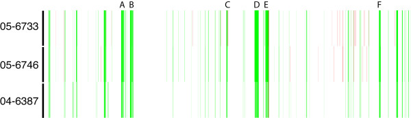 DNA microarray-based comparative genomics of S . Enteritidis PT13. Array probes represent the linear order of S . Typhimurium LT2 coding sequences from left to right, with the custom Salmonella genomic island 1 (SGI1) at the far-left side. White denotes similarity to LT2, green denotes putative divergence and red represents putative duplication or copy number change. Clusters of bacteriophage-related determinants that are divergent in S . Enteritidis compared to S . Typhimurium: A, STM893–929 (Fels-1 prophage); B, STM1005–1024 (Gifsy-2 prophage); C, STM2230–2240 (putative phage); D, STM2589–2636 (Gifsy-1 prophage); E, STM2732–2772 (Fels-2 prophage); F, STM4198–4218 (putative phage).