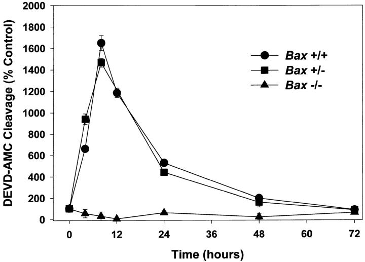 BAX is required for increases in caspase activity. Cultures were switched to K5+S medium, lysed after 4, 8, 12, 24, 48, or 72 h, and cleavage of <t>DEVD-AMC</t> was determined. Control cultures were switched to K25+S medium and treated identically. Data represent mean ± SD for triplicate measurements from one experiment and are representative of two additional independent experiments.