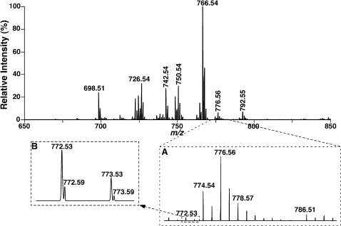 "Representative negative-ion ESI/MS analyses of bovine heart ethanolamine glycerophospholipid molecular species. Bovine heart lipids were extracted by a modified Bligh and Dyer procedure [21] and the PtdEtn fraction was separated by using HPLC with a cation-exchange column as previously described [23] . Analyses of PtdEtn molecular species were performed in the negative-ion mode by using an LTQ-Orbitrap mass spectrometer equipped with a Nanomate device as described under "" MATERIALS AND METHODS ""."