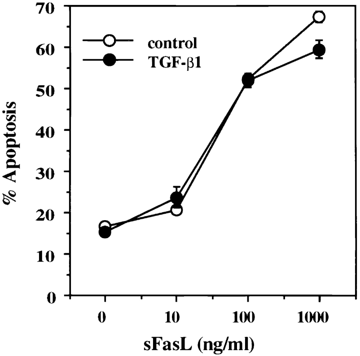 TGF-β1 does not block recombinant soluble FasL– induced apoptosis. A1.1 T cell hybridomas were preincubated for 1 h in the presence of TGF-β1 (10 ng/ml) and then treated with different doses of soluble recombinant human FasL (sFasL). 15 min after addition of soluble FasL, anti-Flag M2 antibody (1 μg/ml) was added to cross-link soluble FasL. After 12 h incubation, percentage of apoptosis was assessed by propidium iodide uptake and analyzed using a FACScan ® .
