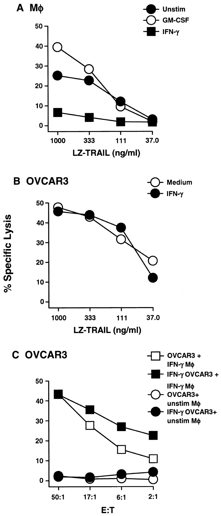 IFN-γ stimulation renders Mφ resistant to TRAIL-induced death, but not tumor cell targets. (A) Peripheral blood Mφ were incubated for 12 h in the absence or presence of GM-CSF and IFN-γ, then tested for sensitivity to LZ-TRAIL. (B) OVCAR3 tumor cells were incubated for 12 h in the absence or presence of IFN-γ, then tested for sensitivity to LZ-TRAIL. (C) OVCAR3 tumor cells were cultured for 12 h in the absence or presence of IFN-γ, then incubated with unstimulated or IFN-γ–stimulated Mφ. Percent specific lysis was measured by 51 Cr release after 8 h, and each data point represents the mean of triplicate wells. For clarity, SD bars were omitted from the graphs, but were