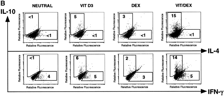 VitD3/Dex induces the development of human T cells producing IL-10 and no IL-4, IL-5, or IFN-γ. Purified human CD4 + CD45RA + were stimulated with plate-bound anti-CD3, soluble anti-CD28, and IL-2 in the presence of neutralizing anti–IL-4, anti–IFN-γ, and anti–IL-12 mAbs. After four rounds of stimulation, cells were characterized for cytokine production by immunoassay (A) as well as by intracellular flow cytometric analysis (B). Representative results of four experiments are shown.
