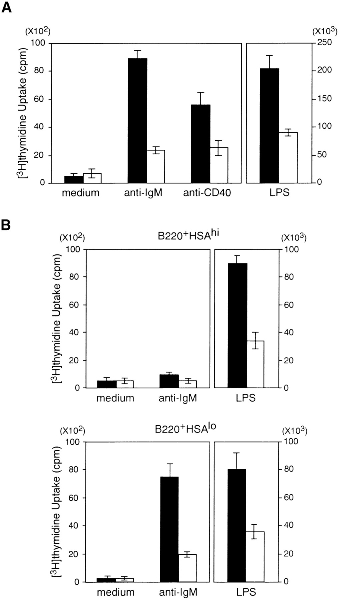 Impaired proliferative response of BCAP −/− splenic B cells. (A) Purified splenic B cells from wild-type and BCAP −/− mice were cultured with medium, F(ab′) 2 goat anti-IgM Ab (15 μg/ml), rat anti-CD40 Ab (10 μg/ml), or LPS (10 μg/ml). The mean and standard deviations are plotted for wild-type (black bars) and BCAP −/− splenic B cells (white bars). Experiments were performed in triplicates. Data shown are representative of three independent experiments. (B) Splenic B cells from the indicated mice were sorted into B220 + HSA hi (immature B) and B220 + HSA lo (mature B) subsets, and experiments were performed in triplicates. Data shown are representative of three independent experiments.