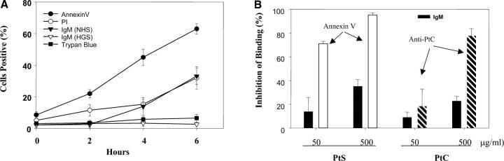 Kinetics and specificity of IgM binding to apoptotic cells. (A) Apoptosis of PBT cells was induced as in Fig. 1 and at time 0, 2, 4 and 6 h, the cells were incubated in medium containing 20% NHS or HGS. Cells were analyzed by flow cytometry for Annexin V or IgM binding as well as for permeability to PI and trypan blue as indicated in the Figure. The results are expressed as the percentage of cells positive. The results are expressed as the mean ± SD of three experiments. (B) Purified IgM was incubated with liposomes containing either 50 or 500 ug/ml PtS or PtC for 30 min at 37°C. Samples were centrifuged and the supernates tested for binding to apoptotic cells. Annexin V and SUV (an anti-PtC specific mAb), were used as positive controls for binding to PtS and PtC, respectively. The results are expressed as percentage of inhibition of binding, calculated from (binding in medium − binding after preadsorbtion with liposome/binding in medium) × 100. The results are expressed as the mean ± SD of three experiments.