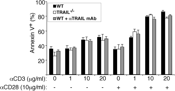 Thymocyte apoptosis in vitro. Thymocytes from BALB/c and BALB/c TRAIL −/− E18 mice were cultured in plates coated with anti-CD3ɛ (145–2C11) plus anti-CD28 (37.51) mAbs or PBS. Neutralizing anti-TRAIL antibodies were added to some of the cultures. After 20 h, live and apoptotic cells were discriminated by staining with annexin V-FITC plus propidium iodide and flow cytometric analysis. Data represent mean and standard error of the mean for six BALB/c mice plus or minus the addition of anti-mTRAIL mAb) or four BALB/c TRAIL −/− mice.