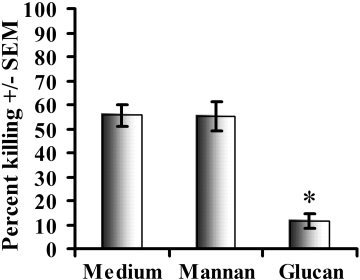 Effects of mannose and β-glucan receptor blockage on alveolar macrophage–mediated killing of P. carinii . Alveolar macrophages were isolated from 6–8-wk-old, male C57BL/6 mice and were pretreated with 100–600 μg/ml mannan or glucan for 30 min and thereafter added to P. carinii overnight at a final macrophage to P. carinii cyst ratio of 100:1. Controls include P. carinii cultured in the absence of macrophages but in the presence of mannan or glucan. Thereafter, RNA was isolated from the contents of each well and quantitative real time PCR for P. carinii rRNA copy number was performed. Cumulative results from four separate experiments are shown. *, significant differences between untreated and glucan-treated alveolar macrophages (P = 0.008). Data are expressed as mean percent killing ± SEM.
