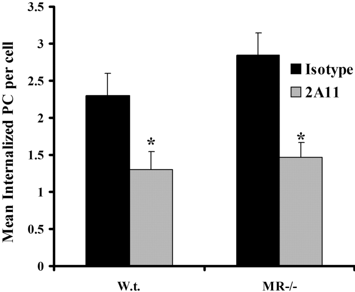 Internalization of P. carinii by alveolar macrophages collected from macrophage MR-deficient (MR −/− ) mice. Alveolar macrophages were isolated from 6–8-wk-old, male C57BL/6 or MR −/− mice and pretreated with 2.0 μg/ml 2A11 (gray bars) or isotype control antibody (solid bars). Alexa Fluor 488 succinimidyl ester–labeled P. carinii cysts and trophozoites were added at a macrophage to P. carinii ratio of 1:5 in an in vitro phagocytosis assay. Thereafter, aliquots of macrophage/ P. carinii cocultures were subjected to confocal microscopy for determination of P. carinii internalization. *, significant differences between cocultures of isotype and 2A11 (P