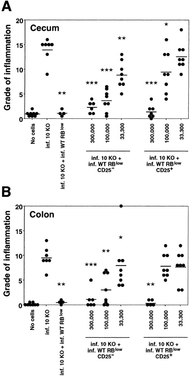 CD25 − CD45RB low as well as CD25 + CD45RB low CD4 + cells from infected WT mice protect RAG KO mice against colitis. Infected RAG KO mice were given either no cells or 3 × 10 5 CD4 + cells from infected IL-10 KO mice either alone or with 3 × 10 5 CD45RB low CD4 + cells, 3 × 10 5 , 10 5 , or 3.3 × 10 4 CD25 − CD45RB low , or CD25 + CD45RB low CD4 + cells from infected WT mice as indicated. (A) Pathology in the cecum and (B) ascending colon was analyzed 4 wk later. •, an individual mouse; —, the average for each group. Data shown are pooled from two separate experiments. *, P