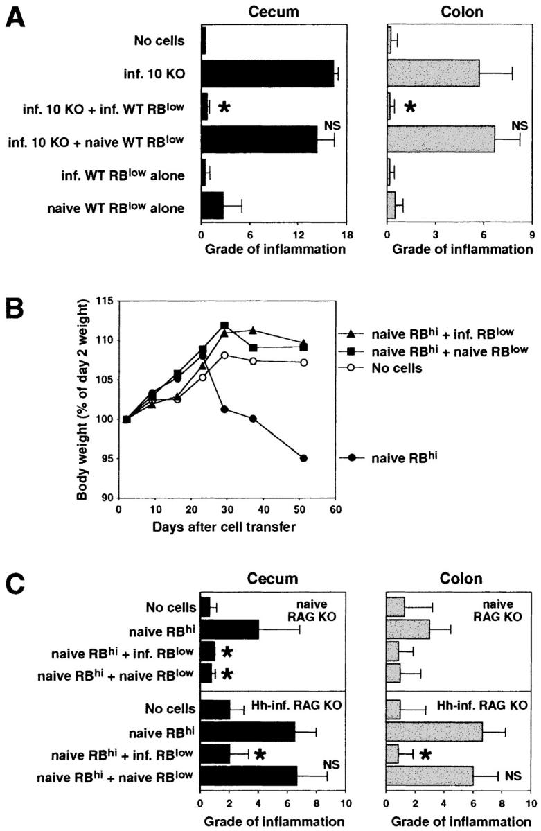 CD45RB low CD4 + cells from naive WT mice are unable to protect RAG KO recipients from colitis induced by pathogenic T cells plus H. hepaticus infection. (A) Infected RAG KO mice were given either no cells or CD4 + cells from infected IL-10 KO mice and CD45RB low CD4 + cells from naive or infected WT mice (4 × 10 5 of each population), and tissues were analyzed 4 wk later. Bars represent mean cecal (solid bars) and colonic (gray bars) histology scores ± SD of three mice per group. (B and C) Uninfected or H. hepaticus –infected (Hh-inf.) RAG KO mice were given either no cells or CD45RB hi CD4 + cells from naive WT mice and CD45RB low CD4 + cells from naive or infected WT mice (3 × 10 5 of each population). Body weights were measured weekly and tissues were analyzed after 4 and 7.5 wk for infected and uninfected recipients, respectively. (B) Results shown represent mean body weights (expressed as a percentage of the weight 2 d after cell transfer) of four mice per group from the uninfected RAG KO recipients. No difference in body weight was observed between the four groups of infected recipients over the 4-wk time period that these groups were being followed (not depicted). (C) Bars represent mean cecal (solid bars) and colonic (gray bars) histology scores ± SD of three or four mice per group. Statistical significance was tested for groups receiving pathogenic cells. *, P