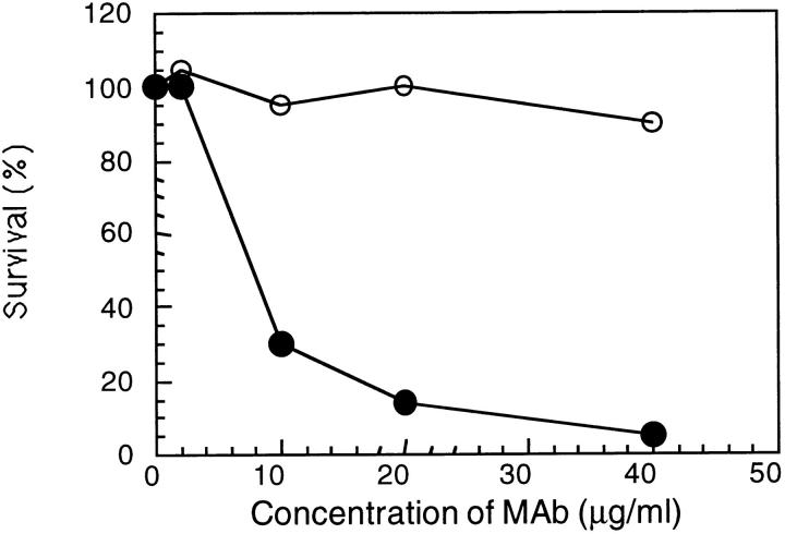 Bactericidal activity of protein A–purified mAb Me-1 against N. <t>meningitidis</t> strain <t>608B.</t> Guinea pig serum ( closed circles ) or heat inactivated guinea pig serum ( open circles ) were used as the source of complement to evaluate the bactericidal activity.