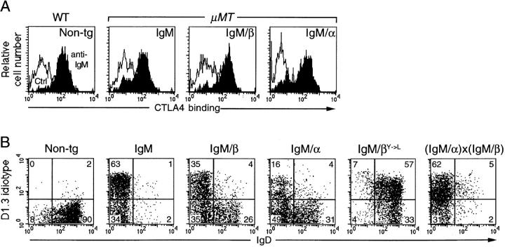 In vitro activation and allelic exclusion. ( A ) Upregulation of CTLA4 binding following a 24-h culture with antiIgM or medium alone ( Ctrl ). Cultured splenocytes from transgenic mice in a μMT background (or wild-type nontransgenic controls, WT, Non-tg) were stained with PE–anti-B220 and an mCTLA4–Hγ1 fusion protein, which was visualized with <t>FITC–anti-human</t> <t>IgG.</t> The profiles were gated for B220 + cells that excluded propidium iodide. ( B ) Exclusion of endogenous IgD. Splenocytes were stained with FITC–antiB220, PE–anti-IgD, and biotinylated anti-D1.3 plus RED670– streptavidin. Cells were gated for B220 + and numbers denote percentage of splenic B cells within each quadrant.