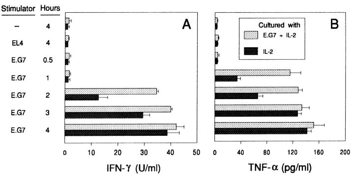 Comparison of cytokine production between stimulated and unstimulated CTLs. Stimulated OVA-CTLs were stimulated weekly with irradiated E.G7-OVA, syngeneic filler cells, and Con A supernatant. Unstimulated OVA-CTLs were maintained by weekly replenishment with irradiated filler cells and Con A supernatant, but without E.G7-OVA. After 100 d, 10 6 of stimulated or unstimulated OVA-CTLs were incubated with 10 5 of EL4 or E.G7-OVA, or without targets. After incubation at 37°C, supernatants were tested for production of ( A ) IFN-γ and ( B ) TNF-α by ELISA. The results shown are the mean of triplicates ± SD of a representative experiment that has been repeated twice.