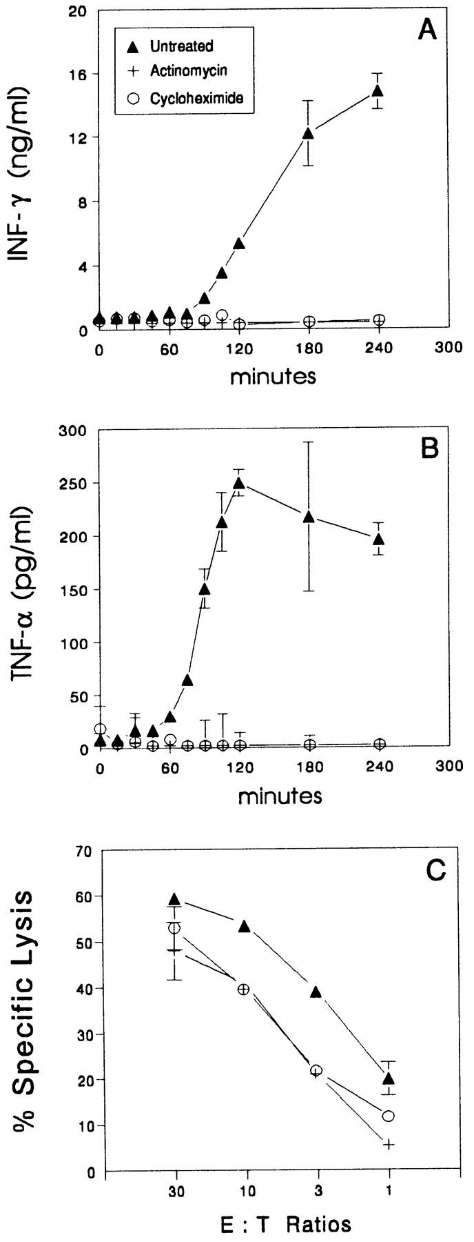 Metabolic inhibitors prevent <t>cytokine</t> production, but not cytolytic activity of CTLs. OVA-CTLs (10 6 /ml) were pretreated with 5 μg/ml actinomycin D, 15 μg/ml cycloheximide, or medium at 37°C for 1 h. The cells were then washed and incubated with 10 5 of E.G7-OVA. After incubation at 37°C for various periods of time, supernatants were tested for production of ( A ) IFN-γ and ( B ) TNF-α by ELISA. In C , pretreated OVA-CTLs were incubated with 51 Cr-labeled targets. After 4 h, supernatant fluids were collected and counted. The results of one of two similar experiments are shown as the mean of triplicates ± SD.