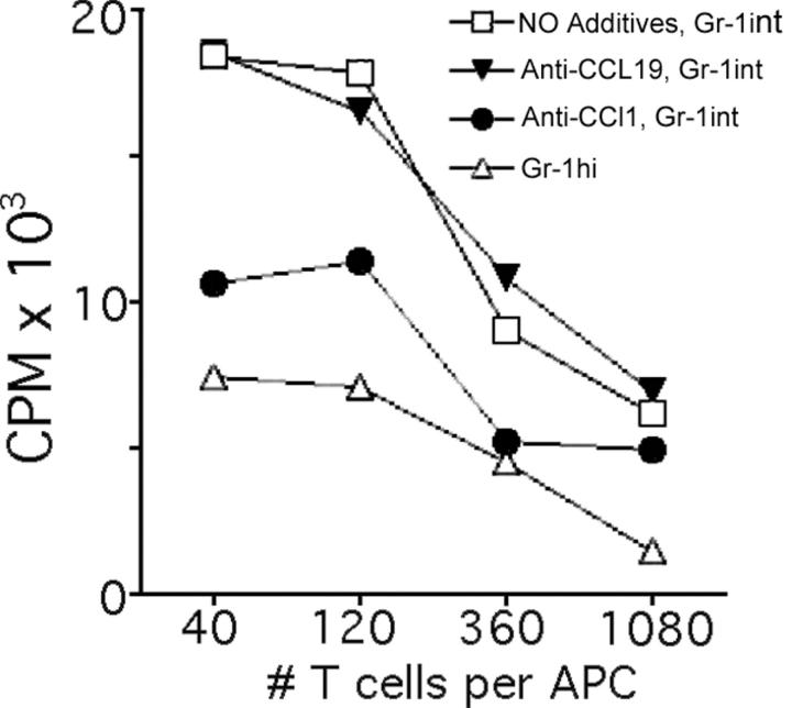 Allostimulatory capacity of monocyte subsets sorted from the periphery and effect of an antagonist to the CCR8 ligand CCL1. (A) Gr-1 hi and Gr-1 int recruited monocytes from the peritoneal lavage of C57BL/6 CCR8 +/+ mice were sorted to purity by flow cytometry using mAbs to F4/80 and Gr-1. The cells were cultured separately in GM-CSF for 2 d in the absence of added mAb, or in the presence of 5 μg/ml of neutralizing mAbs to chemokines CCL1 (TCA-3) or CCL19. These cells were washed to remove residual antibodies and cultured with BALB/c T cells for evaluation of their potential to support allogeneic T cell proliferation in a mixed lymphocyte reaction. These data depict one out of two experiments conducted with similar results.