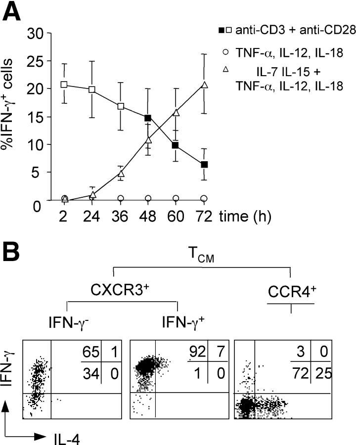 (A) Kinetics and requirements of TCR- and cytokine-induced IFN-γ production. CFSE-labeled CD4 + memory T cells were stimulated for the indicated times with either anti-CD3 and anti-CD28 antibodies (squares), or with TNF-α, IL-12, and IL-18 in the absence (circles) or presence (triangles) of IL-7 and IL-15. IFN-γ production was analyzed by intracellular staining. Empty symbols indicate conditions with undivided cells, whereas filled symbols indicate conditions with dividing cells. The mean percentage of IFN-γ + cells of three independent experiments is plotted. (B) Cytokine-stimulated CXCR3 + T CM cells lacking IFN-γ–producing capacity become Th1 cell effector cells. Purified CFSE-labeled CXCR3 + T CM and CCR4 + T CM cells were stimulated with IL-7, IL-15, TNF-α, IL-12, and IL-18 for 60 h, and IFN-γ–secreting cells were purified by cell sorting. IFN-γ + and IFN-γ − cells were then expanded for an additional 5 d with IL-7 and IL-15, briefly stimulated with PdBu and ionomycin, and analyzed for IL-4 and IFN-γ production by intracellular staining. One representative donor out of three is shown.