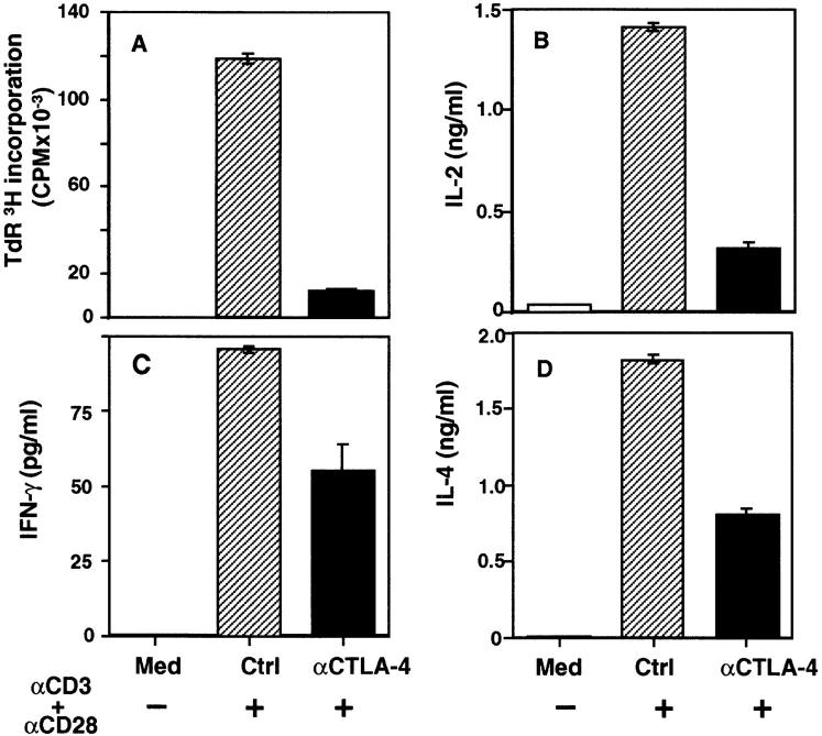 Cross-linking of CTLA-4 inhibits cytokine production by  CD4 +  T cells. CD4 +  T cells isolated from spleens of B6 mice were cultured  in complete DMEM only ( Med ) or with the indicated antibodies: anti– CTLA-4 (20 μg/ml) or control hamster IgG ( Ctrl ; 20 μg/ml) in the absence or presence of anti-CD3 (2 μg/ml) and anti-CD28 (5 μg/ml). Goat  anti–hamster IgG (heavy and light chains) antibody was then added to all  the wells at 20 μg/ml. T cell proliferation ( A ) was expressed as mean ± SD  of triplicate wells for  3 H incorporation ( CPM ). Secretion of IL-2 ( B ),  IFN-γ ( C ), and IL-4 ( D ) by CD4 +  T cells is shown. Supernatants were collected at 48 h, and the cytokine levels were determined by ELISA. The values are expressed as mean ± SD of replicate wells of ELISA plates.