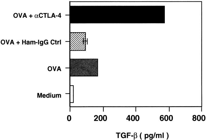 Engagement of CTLA-4 with antibody and stimulation of TCR by antigenic peptide upregulates TGF-β secretion. CD4 + T cell line CW-SW-1 specific for OVA peptide 323–339 was restimulated with OVA antigen (100 μg/ml) in the presence of normal BALB/c splenic APCs in X-Vivo-20. Anti–CTLA-4 (40 μg/ml) or the isotypic control hamster IgG ( Ham-IgG Ctrl ; 40 μg/ml) was added into the indicated culture wells. The supernatants were collected 72 h later and TGF-β was determined by ELISA.