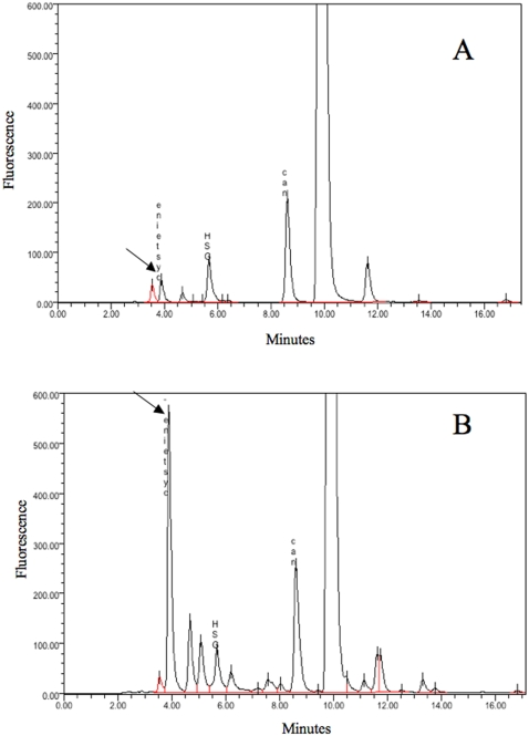 Soluble thiols analysis. HPLC analysis of nonprotein thiols in S. maltophilia Sm777 grown in <t>TSB/10</t> without (A) or supplemented (B) with 500 µM of CdCl 2 . The arrow indicates cysteine peack. N -acetyl-L-cysteine (NAC) was used as an internal standard.