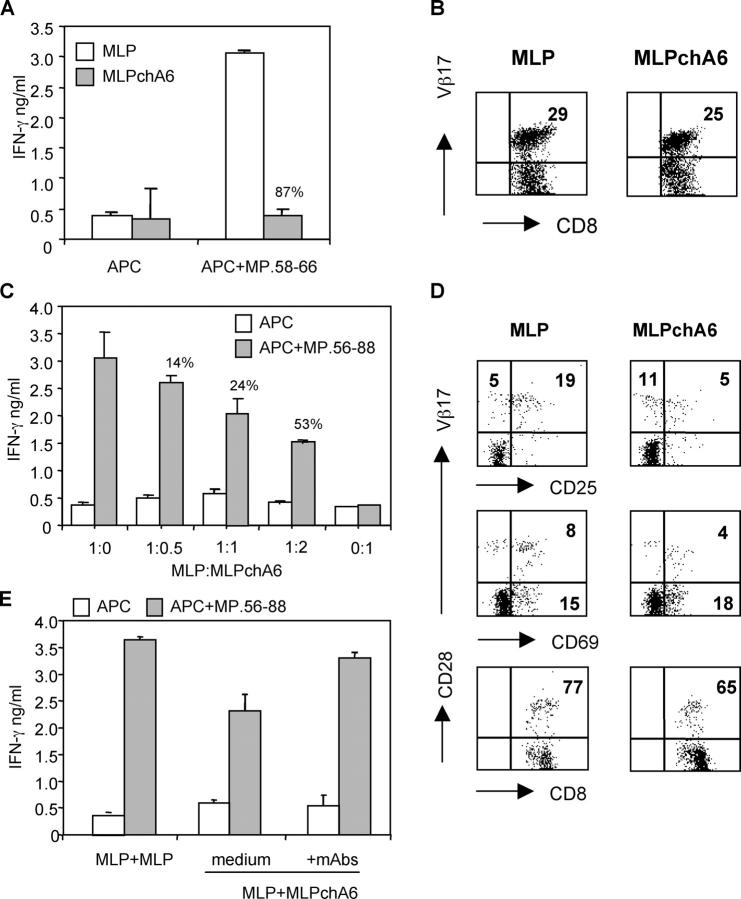 ChA6 mAb induced MP.58-66–specific CD8 + T reg cells. (A) Enriched CD8 + T cells were stimulated with 10 μg/ml peptide MP.58-66, in the absence (MLP) or presence of 10 μg/ml chA6 mAb (MLPchA6). After two rounds of stimulation, MLP and MLPchA6 cells were rechallenged with T2 cells previously pulsed with the MP.58-66 peptide. After 24 h culture, IFN-γ was quantified in culture supernatants by ELISA. Results from one representative donor out of 16 are shown. The percentage of inhibition of IFN-γ release in the presence of chA6 mAb relative to control is presented. (B) MLP and MLPchA6 cells were stained with TCR-Vβ17–specific mAb. Results from one representative out of eight donors tested are shown. (C) After two rounds of stimulation, MLP cells were cocultured with increased amounts of MLPchA6 cells with MP.56-88 pulsed and nonpulsed T2 cells in the absence of chA6 mAb. After 24 h culture, IFN-γ was quantified in culture supernatants by ELISA. Results from one representative out of three donors tested are shown. The percentage of inhibition of IFN-γ release in the presence of chA6 mAb relative to control is presented. (D) MP.58-66–specific T cell lines were stained with the indicated surface molecules and analyzed by flow cytometry. Percentages of positive cells, set according to the isotype controls, are shown in the relative quadrant. Results from one representative donor out of four donors tested are shown. (E) MLP cells were cocultured with MLPchA6 cells (1:1 ratio) and stimulated with MP.56-88 pulsed and nonpulsed APC in the presence of 10 μg/ml anti-IL-10R and 10 μg/ml anti-TGF-β mAb. After 24 h of culture, IFN-γ was quantified in culture supernatants by ELISA. Results from one representative out of two donors tested are shown. The percentages of inhibition of IFN-γ release in the presence of chA6 mAb relative to control are presented.