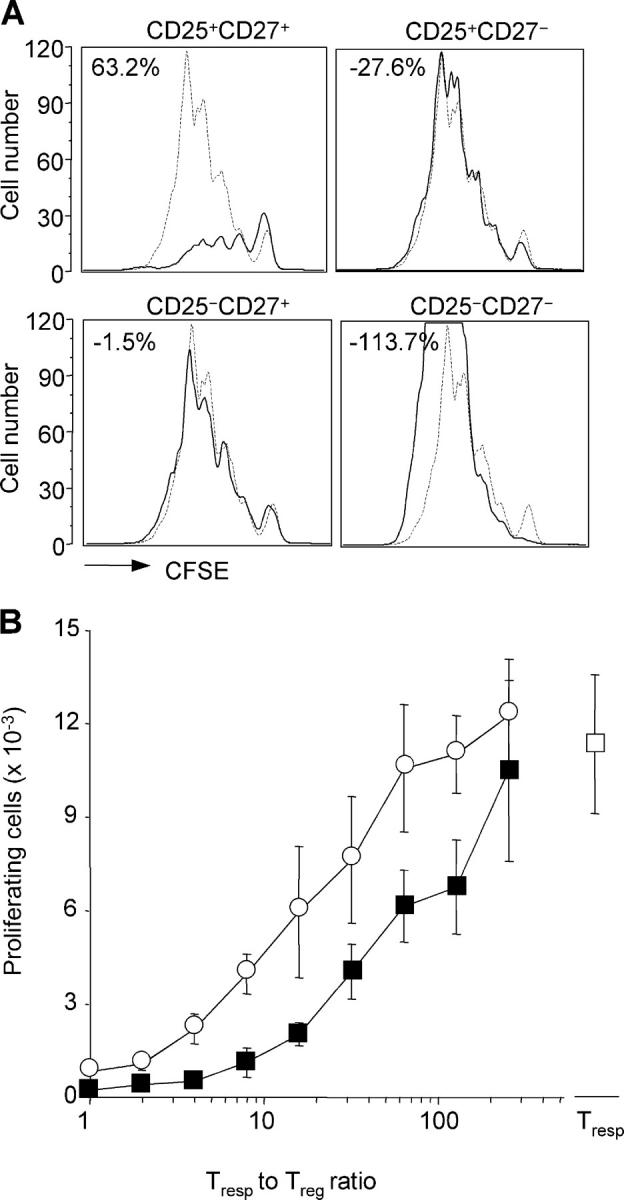 CD27 identifies potent suppressor cells within CD4 + CD25 + synovial T cells. (A) Proliferation of CFSE-labeled CD4 + CD25 − peripheral blood T cells stimulated by anti-CD3 and DCs in the absence (dashed lines) or presence (solid line) of equal numbers of the indicated autologous CD4 + T cells isolated from synovial fluid. The percentage inhibition was calculated as in Fig. 1 . Comparable results were obtained using synovial T cells isolated from patient no. 14 (depicted) and nos. 2, 5, and 7. (B) Proliferation of CFSE-labeled CD4 + CD25 − peripheral blood T cells in the presence of serial twofold dilutions of autologous CD4 + CD25 + CD27 + T cells from peripheral blood (open circle) or synovial fluid (closed square). Shown is the total number of responder T cells that had undergone more than one cell division. Mean ± SD of triplicate cultures. Comparable results were obtained with samples from patient no. 15 (depicted) and nos. 5 and 7.