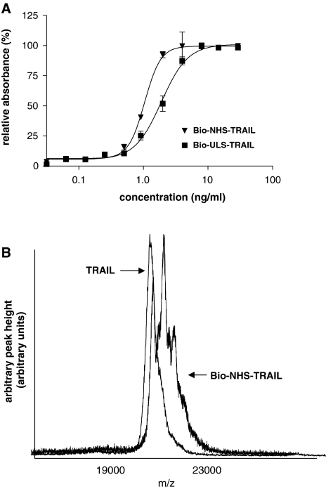Characterization of biotinylated TRAILs. Panel A: Anti-biotin ELISA with streptavidin-HRP. Signals were corrected for background and expressed relative to the maximum detected intensity. Panel B: MALDI-TOF analysis of TRAIL and biotin-NHS-TRAIL