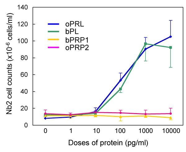 Lactogenic activity of oPRP2 and bPRP1 . Nb2 lymphoma cell proliferation and PRP dosage are shown. oPRL and bPL were used as positive controls. Values are means ± SD.