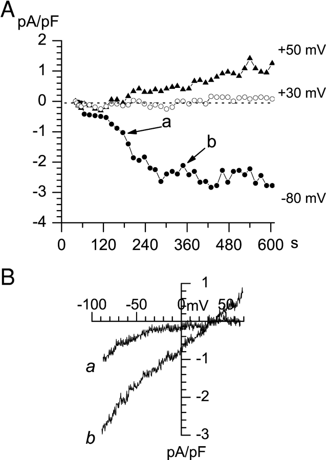 Activation of I CRAC and I SOC currents in A431 cells by intracellular store-depletion. Whole-cell recordings were performed at 0-mV holding potential using ramp protocol (test potentials from −100 to 70 mV; duration of the ramp, 200 ms; interramp interval is 10 s). Pipette solution contained (in mM) 10 Cs-HEPES pH 7.3, 145 NMDG aspartate, 10 Cs-EGTA (pCa > 9.0), 1.5 MgCl 2 . Extracellular solution contained (in mM) 10 Cs-HEPES pH 7.3, 140 NMDG aspartate, 10 BaCl 2 . (A) The amplitudes of peak currents recorded at each ramp at −80 mV (filled circles), 30 mV (open circles) and 50 mV (filled triangles) test potentials are plotted as a function of time after break-in. (B) Current-voltage relationships recorded at 159 s (curve a) and 275 s (curve b). Data from the same experiment are shown in A and B. Ramps corresponding to curves a and b in B are indicated by arrows in A. The data are representative of 19 experiments.