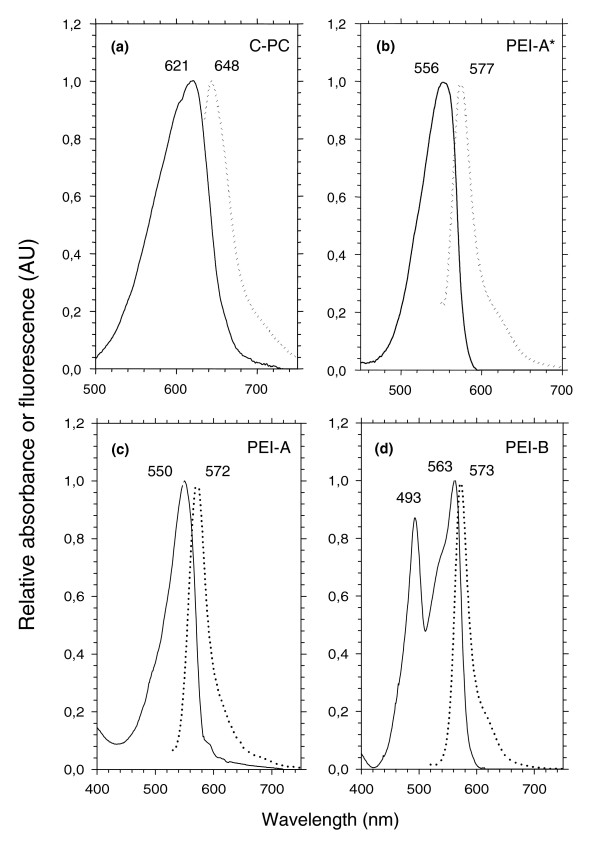 Absorption (continuous line) and fluorescence (dotted line) properties of isolated PBP complexes. (a) C-PC (as in Synechococcus spp. RS9917, WH5701 and WH8018); (b) PEI-A* (as in Synechococcus spp. WH8018 and WH7805); (c) PEI-A (as in Synechococcus spp. WH7803, Almo03 and RS9912); (d) PEI-B (as in Synechococcus spp. WH8102, CC9605 and Oli31).