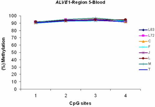 The results of DNA methylation analysis in a unique region of ALVE 1 from blood in line 7 2 , line 6 3 and RCS C, F, J, L, M and T blood. n = 5 for each line or strain. P > 0.05.