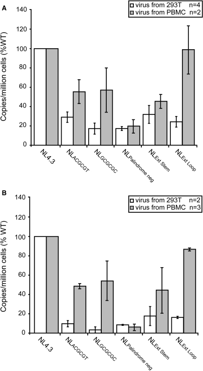 Production of HIV-1 DIS RNA mutants from PBMCs partially rescues defects in viral cDNA synthesis. WT and DIS mutant HIV-1 viruses were produced either by transfection of 293T cells or infection of PHA-stimulated freshly isolated PBMCs. Equivalent amounts of DNase treated virus were used to infect either SupT1 cells ( A ) or PBMCs ( B ). Cells were lysed 24 h postinfection and HIV-1 cDNA was measured by real-time PCR. HIV-1 DNA copies were normalized by CCR5. Results are reported as a percentage of the WT control and represent means (±SE) of separate experiments.