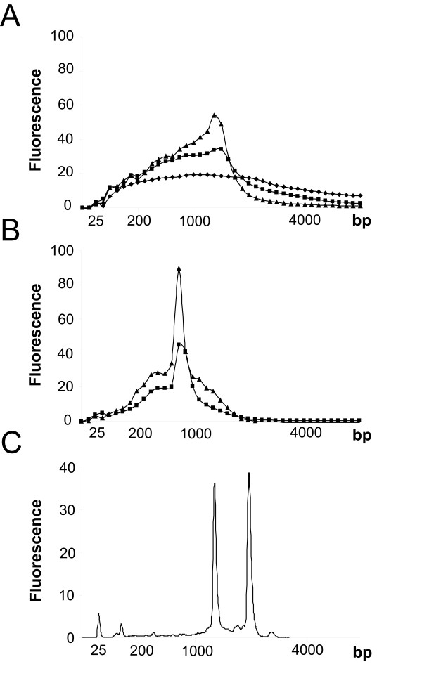 The size distribution of products amplified from 500 (triangle), 50 (square), 5 ng (diamond) M. tuberculosis total RNA using oligo-dT (A) and ADP (B) amplification strategies. (C) Unamplified total mycobacterial RNA. The peaks at 25 bp represent the marker added to all samples. The size distributions were plotted using the average of 2–4 replicate amplifications. Abundance units are detailed in relative fluorescence and plotted against migration time that has been converted into a base pair (bp) estimate of product size as measured using the Agilent Bioanalyser.
