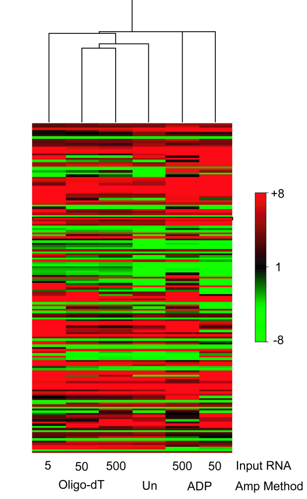 A Spearman's rank correlation of the 155 genes identified to be significantly differentially expressed in microaerophilic compared to aerobic M. tuberculosis growth conditions using unamplified RNA (marked Un). The mean gene expression ratios derived from unamplified RNA and from the products of 500, 50, and 5 ng amplifications using oligo-dT and ADP methods are displayed. Genes are ordered in rows, amplification conditions as columns. Red colouring indicates genes induced in microaerophilic vs. aerobic growth conditions; green colouring denotes repression.