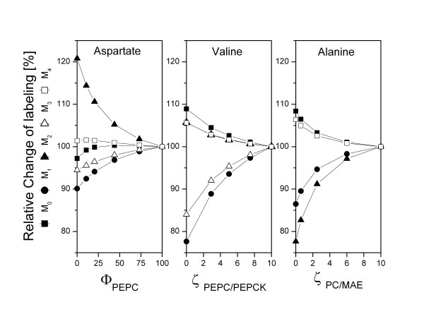 Experimental design for quantification of flux parameters at the pyruvate node of Corynebacterium glutamicum with an equimolar mixture of [ 13 C 6 ] glucose and naturally labelled glucose . Relative change of the mass isotopomer distribution of aspartate (m/z 418) with varied Φ PEPC (A), relative change of the mass isotopomer distribution of valine (m/z 288) with varied ζ PEPC/PEPCK (B), relative change of the mass isotopomer distribution of alanine (m/z 260) with varied ζ PC/MAE (C). The labelling patterns at sole contribution of PEPC (Φ PEPC = 100 %), and highly reversible fluxes at the pyruvate node (ζ PEPC/PEPCK = ζ PC/MAE = 10) are taken as reference point and set to 100 %. The flux parameters investigated here comprise Φ PEPC (flux partitioning between PEPC and PC), ζ PEPC/PEPCK (ratio of exchange flux to net flux between the pools of PEP and OAA/MAL catalyzed by PEPC and PEPCK) and ζ PC/MAE (ratio of exchange flux to net flux between the pools of PYR and OAA/MAL catalyzed by PC and MAE). The exact definitions for the flux parameters are given in the appendix. Unless varied the flux parameters reflect the situation for the parent strain C. glutamicum lysC fbr (Figure 4).