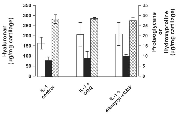 Influence of cGMP modulators. Shown is the influence of cGMP modulators on the <t>hyaluronan</t> (open bars), proteoglycan (solid bars), and collagen (cross-hatched bars) production of bovine cartilage. Cartilage explants were cultured in the presence of 2 ng/ml IL-1 and the guanylate cyclase inhibitor ODQ (1H-[1,2,4]-oxadiazolo [4,3a]quinoxaline-1-one; 25 μmol/l) or dibutyryl-cGMP (25 μmol/l). The incubation periods were for 3 days for hyaluronan, 5 days for proteoglycans and 28 days for collagens. For stimulation of collagen degradation, the cartilage explants were supplemented with 25 ng/ml IL-17, and 2 μmol/l retinoic acid. The concentrations of hyaluronan in the supernatant, proteoglycans and collagen (as hydroxyproline) were determined as described under Materials and methods. The error bars represent the standard deviation of three determinations.