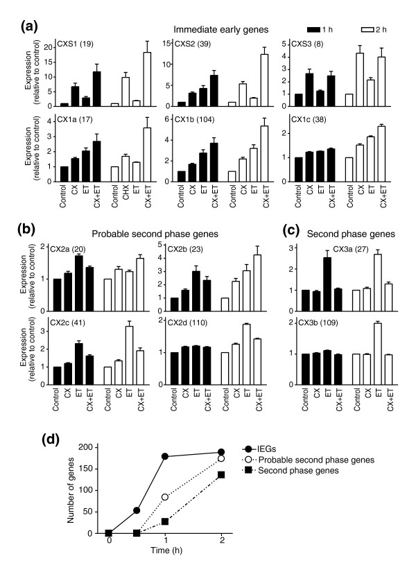 Identification of immediate early and second phase RNAs with increased expression in response to ET-1. Cardiomyocytes were unstimulated (Control), exposed to cycloheximide (CX) alone, or to ET-1 (ET) in the absence or presence of cycloheximide for 1 h (solid bars) or 2 h (open bars). (a) RNAs in CXS1, CXS2 and CXS3 (whose induction by ET-1 was further increased by cycloheximide), and CX1a, CX1b and CX1c (whose induction was not inhibited by cycloheximide) were classified as immediate early gene RNAs. (b) CX2a, CX2b, CX2c and CX2d RNAs showed partial inhibition of the response to ET-1 at 1 h by cycloheximide and are probably second phase RNAs. (c) CX3a and CX3b RNAs were clearly second phase RNAs with > 80% inhibition of the response to ET-1 by cycloheximide. The numbers of transcripts in each cluster are shown in parentheses. Statistical significance (repeated measures one-way ANOVA with Tukey post-test) p