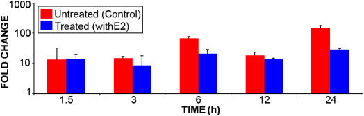 Real-time polymerase chain reaction expression of manganese superoxide <t>dismutase</t> in HLE-B3 cells. HLE-B3 cells were incubated with 1 μM 17β-E 2 for 0, 1.5, 3, 6, 12, and 24 h. The expression of MnSOD mRNA was analyzed by quantitative real-time PCR. According to the two-way ANOVA, there were no statistically significant changes in MnSOD mRNA at any time point after estrogen treatment compared to the control (untreated). Data are expressed as mean±SD values. p
