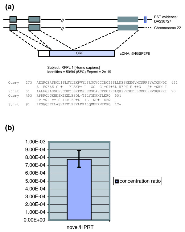 Example of a novel transcript detected by RACE sequencing. (a) Novel transcript 5NGSP2F8 (with consensus splice site) has a potential open reading frame of 142 amino acids; also, there is spliced expressed sequence tag (EST) evidence for it. (b) Real-time PCR relative quantification of the novel transcript to HPRT1 in placenta polyA+ RNA. RACE, rapid amplification of cDNA ends.