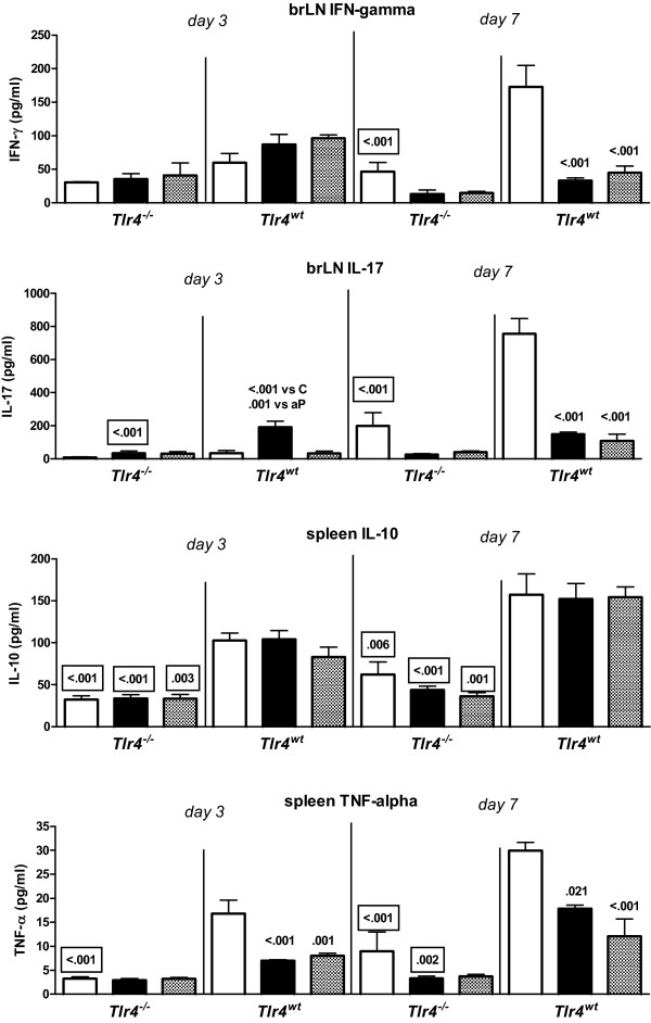 Ex vivo  cytokine production by bronchial lymph node and spleen cells .  Tlr4 -deficient and control mice were sc injected with 1/5 HD wP (|▮|), aP (|▒|), or adjuvant (| |), twice before intranasal  B. pertussis  infection. Three and seven days after challenge the bronchial lymph nodes (LN) and spleens were excised and cell suspensions were made. Bronchial LN cells were cultured with Con A for 24 hr; spleen cells were cultured with heat-killed  B. pertussis  for 72 hr. Culture supernatants were analyzed for cytokine content by Luminex. Data are indicated as mean ± SEM (N = 6). Non-boxed  P -values: compared to the adjuvant control, or (when indicated) aP-vaccinated group (same strain and day after challenge). Boxed  P -values: compared to wild-type mice (same treatment and day after challenge). ANOVA followed by Bonferroni. A single representative experiment of 2 is shown.