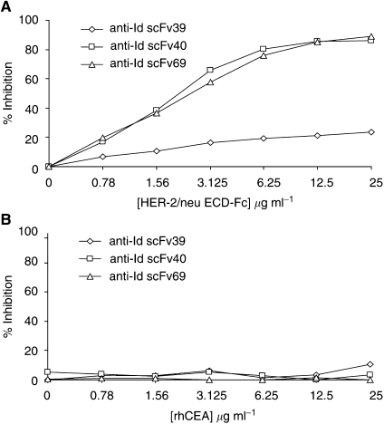 Inhibition of purified soluble scFv 39, 40 and 69 binding on trastuzumab F(ab′) 2 fragments by ( A ) HER-2/neu ECD-Fc fusion protein and ( B ) rhCEA, using a competitive ELISA. Increasing amounts of inhibitor were mixed with either anti-Id scFv 39, 40 or 69 used at a dilution giving an A 490 ranging from 1 to 1.5 in ELISA (corresponding to a concentration of about 20 μ g ml −1 ). The incubation on trastuzumab F(ab′)2 fragments for 1.5 h was followed by the detection of scFv binding with HRP-conjugated M2 anti-FLAG mAb (1 : 2000). The results obtained are expressed as percent inhibition at each concentration of inhibitor.