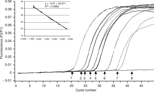Expression of HER-2/neu RNA by real-time PCR (LightCycler). Amplification curve shows serial dilutions of an initial amount of SK-BR-3 RNA: 1 (3333 cells), 2 (333 cells), 3 (166 cells), 4 (33 cells), 5 (16 cells), 6 (1.6 cells) and 7 (0.6 cells). Inset, standard curve plot of the log of SK-BR-3 RNA cells numbers vs Cp. The standard curve shows seven orders of linear dynamic range ( y =−3.67 x +33.071; R 2 =0.9983).