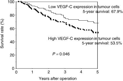 Postoperative survival of completely resected p-stage I–IIIA NSCLC. Comparison according to the status of VEGF-C expression in tumour cells: patients who had high staining for VEGF-C showed significantly less favourable survival rates compared with patients who had low staining for VEGF-C ( P =0.046).