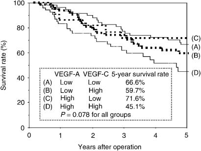 Postoperative survival of completely resected p-stage I–IIIA NSCLC. Comparison according to the status of <t>VEGF-A</t> expression and <t>VEGF-C</t> expression in tumour cells. The survival rates of patients who had high VEGF-A and VEGF-C expression in tumour cells and patients who had low VEGF-A and VEGF-C expression in tumour cell were 45.1 and 66.6%, respectively. The survival rates of patients who had high VEGF-A and low VEGF-C expression in tumour cells and patients who had low VEGF-A and high VEGF-C expression in tumour cell were 71.6 and 59.7%, respectively.