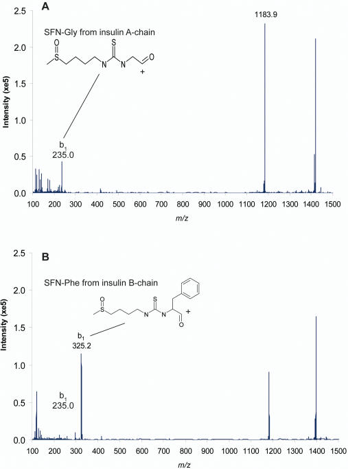 Enhanced product ion <t>(EPI)-MS</t> spectra of the two insulin-SF conjugates. MS 2 product ion spectra of (A) 6.46 min and (B) 7.08 min retention time peaks from <t>LC-MS</t> <t>analysis</t> of human plasma incubated with bovine insulin and 50 µM SF for 4 h at 37°C. In (A) and (B) m/z 1183.9 corresponds to insulin-SF MH 5 5+ and in (A) m/z 235.0 corresponds to Gly-SF, the N-terminal amino acid of insulin A chain and in (B) m/z 325.2 corresponds to Phe-SF, the N-terminal amino acid of insulin B chain.
