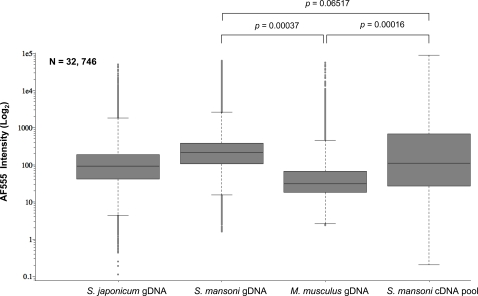 S. mansoni gDNA has superior hybridization characteristics compared to S. mansoni cDNA. The use of S. mansoni gDNA as a common reference reveals higher median intensity values and narrower overall intensity distributions than a complex S. mansoni cDNA reference. Box-plots display signal intensities for the AF-555 channel for S. japonicum , S. mansoni , M. musculus gDNA and complex reference S. mansoni cDNA pool (as described in Methods ). Boxes represent three independent experiments for mouse gDNA, S. mansoni gDNA and S. mansoni cDNA pool, respectively. S. japonicum gDNA is represented by a single experiment. All negative control microarray signals were removed before analysis, <t>microarrays</t> were filtered for manually excluded spots and each experiment was subsequently filtered to contain the same number of spots (n = 32,746). Statistical significance was defined using a Student's t-test between three independently replicated experiments. Horizontal lines represent median oligonucleotide intensity, boxes display oligonucleotide elements 25% above and below the median value and whiskers show oligonucleotide elements within 1.5 deviations of the median. Outlier oligonucleotide intensity values (beyond 1.5 deviations) are illustrated as individual spots.
